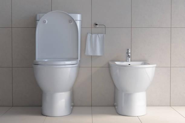 built-in-bidet-toilet